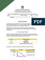 Trigonometria_APOSTILA-01_1aSerie