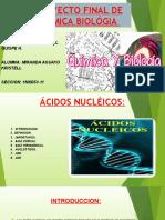 ACIDOS NUCLEICOS MIRANDA