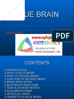Copy of blue_brain2