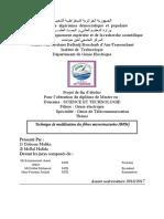 Technique de modélisation des fibres microstructurées (BPM)