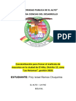 Proyecto Poly Ramos