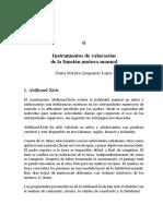 Instrumentos de valoración de la función motora manual