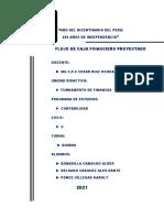 Informe de Flujo de Caja Financiero Proyectado