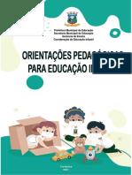 ORIENTAÇÕES PEDAGÓGICAS PARA EDUCAÇÃO INFANTIL