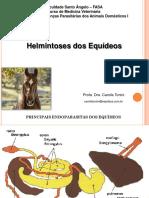 Aula 4. Helmintoses Em Equinos. PDF t6