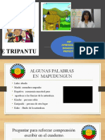 Intro , ABP 3ªAÑO. Pueblos Originarios Hacer Trutruca