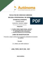 Informe Final - Practicas Preprofesionales