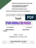 rapport de stage Aout 2008 (1)