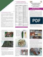 Boletín Técnico - Protección de Semillas Forestales - PortalGuarani.com