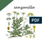 La manzanillaa
