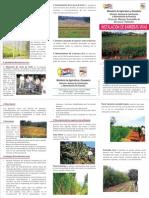Instalación de Barreras Vivas - PortalGuarani.com