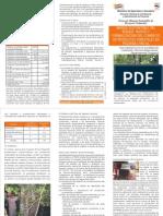 Manejo Sustentable Del Bosque - PortalGuarani.com