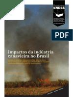 Impactos da Indústria Canavieira no Brasil