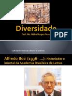 Diversidade cultural em Alfredo Bosi