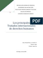 Tratados Internacionales de DD.hh Por Ricardo Riera 104D1