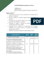 335570063 Programa de Auditoria Docx