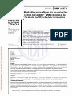 ABNT NBR 14873 2002