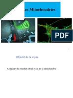 9_Mitochondries