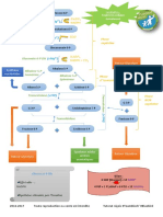 Voie des pentoses phosphates (MaJ)-2