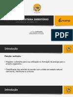 02_ANATOMIA_DO_SISTEMA_DIGESTÓRIO_-_NATAN,_URCAMP[1]