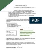 TRABAJO DE CAMPO TALLER DE PENSAMIENTO CRÍTICO Y CREATIVO N° 2