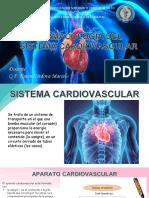 FARMACOLOGIA DEL SISTEMA CARDIOVASCULAR (1)
