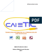 caiet TIC