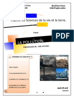 EXPOSE SUR LA POLLUTION au burkina faso