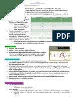 3 - Resumo Farmacologia II - Cefalosporinas, carbapenêmicos e monobactâmicos.
