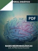 Bases Neurobiológicas Da Aprendizagem
