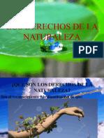 LOS DERECHOS DE LA NATURALEZA 2