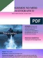 NEOLOGISMOS NO MEIO CINEMATOGRAFICO slide