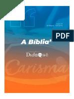 DIDAQUÊ A instrução dos Apóstolos