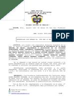 Subsanacion Demanda Luz Stella Palacios Chaves