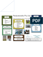 Peaceworks_CurrentProjectsFeb2011