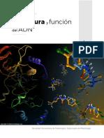 Resumen - Estructura y función del ADN