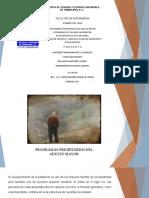 PROGRAMAS PRIORITARIOS GERIATRIA