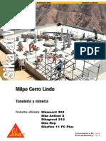 015-Minera Milpo Cerro Lindo