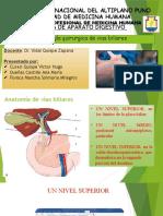 Patología Quirurgica de Vias Biliares
