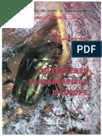 78 - BARAUD Coléoptères Scarabaeoidea d'Europe (1992)