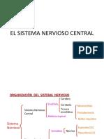 clase_4_EL_SISTEMA_NERVIOSO_CENTRAL1