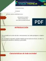 Introducción-Sociedades mercantiles