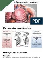 2021-06-14T17-20-17-972060-doenas_s-_respiratorio_8_ano
