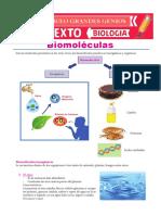 Las Biomoleculas - Grado 6