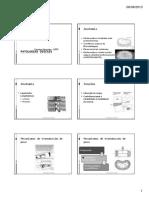 AULA 9- Patologias Discais