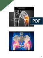 3. Artrologia Cíngulo Pélvico y Miembro Inferior (Parte 1)