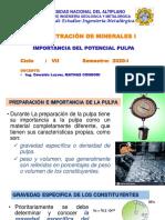 03-04 PROCESO de FLOTACION Importancia Del Potencial Pulpa (2)