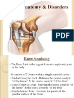 7 - Knee Joint - D3