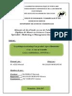 MEMOIRE PDF Ilovepdf Compressed