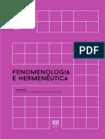 ANPOF - Fenomenologia e Hermenêutica14!2!2018
